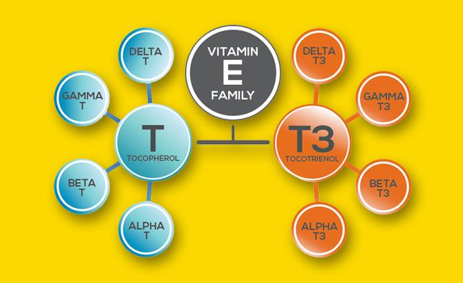 Vitamin E family